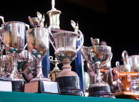 trophies_1.jpg